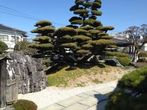 松前町のお庭